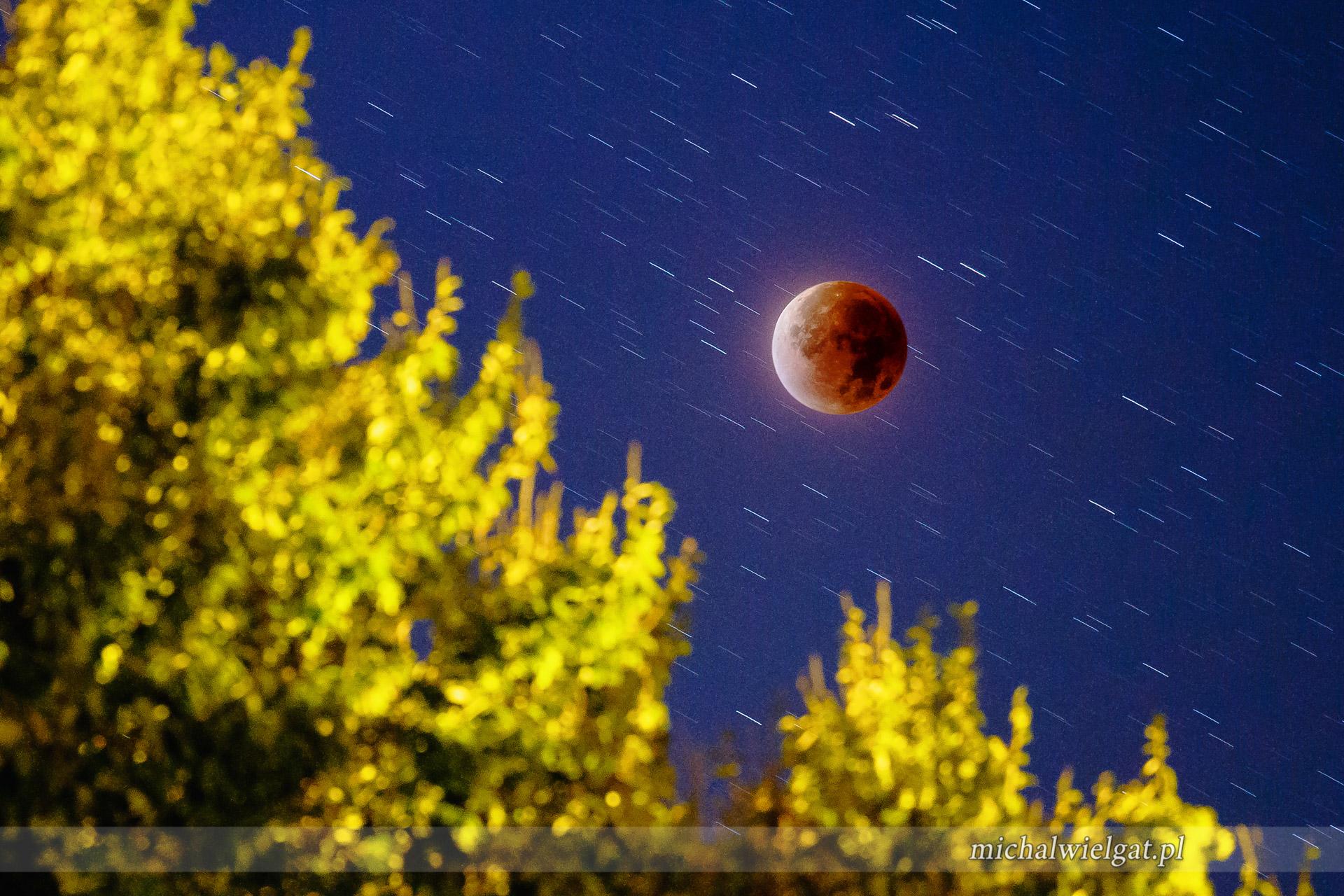zaćmienie księżyca - czerwony krwawy księżyc